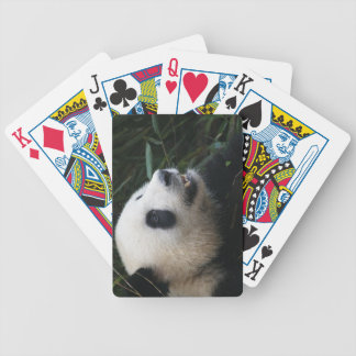Giant Panda in Bamboo forest Bicycle Playing Cards