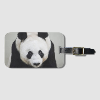 Giant Panda Luggage Tag