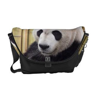 Giant Panda Portrait Courier Bag