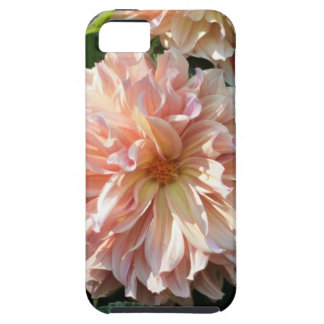 Giant Peach Dahlia - Fine Art Photography iPhone 5 Case