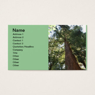 Giant Redwood Sequoia Treetop Business Card