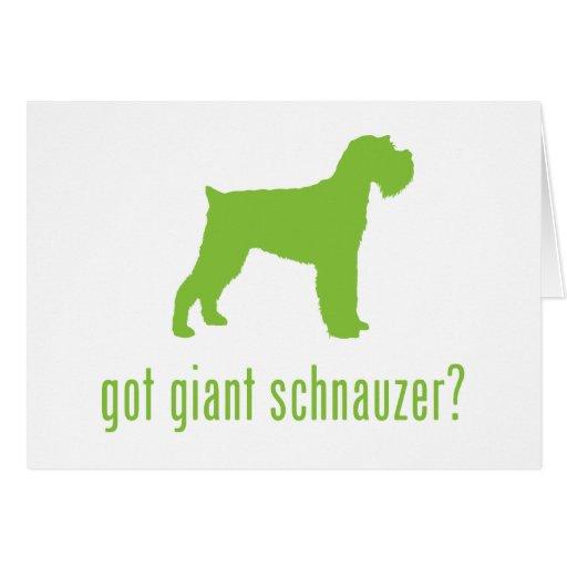 Giant Schnauzer Cards