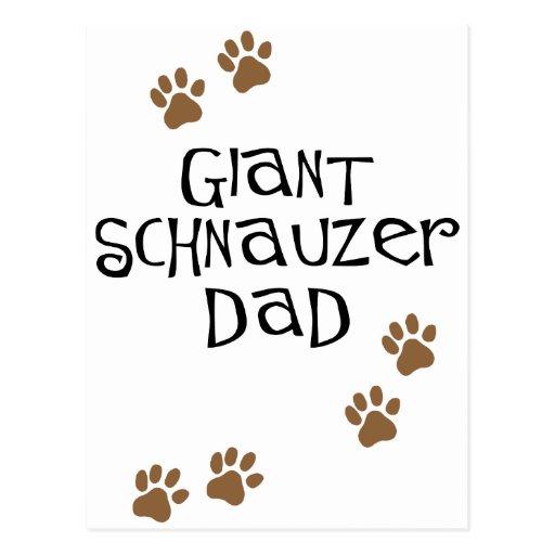 Giant Schnauzer Dad Post Card