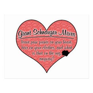Giant Schnauzer Mixes Paw Prints Dog Humor Post Card