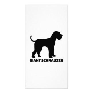 Giant Schnauzer Personalized Photo Card