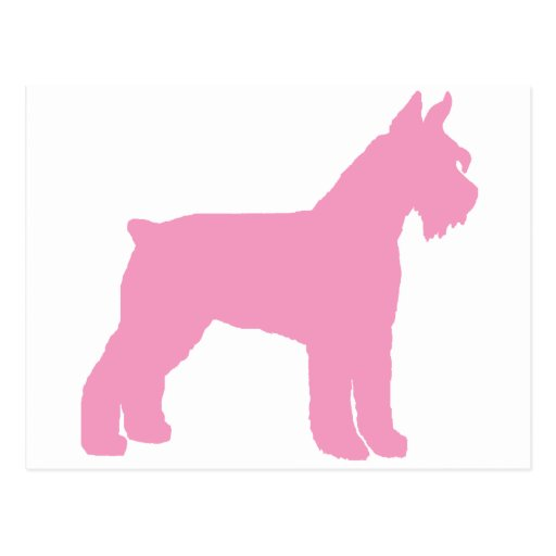 Giant Schnauzer (pink) Post Cards
