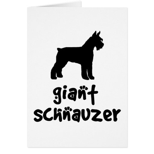 Giant Schnauzer With Cool Text Cards