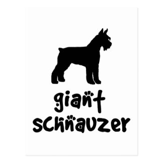 Giant Schnauzer With Cool Text Postcard