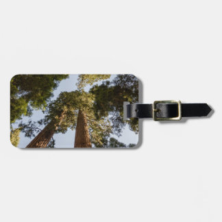 Giant Sequoias in Sequoia National Park Luggage Tag
