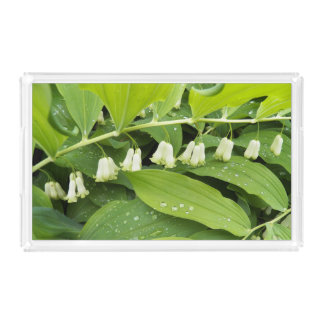 Giant Solomon's Seal Floral Acrylic Tray