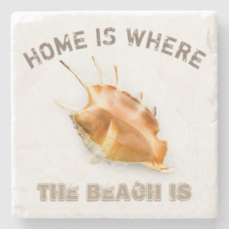 Giant Spider Conch Shell Stone Coaster