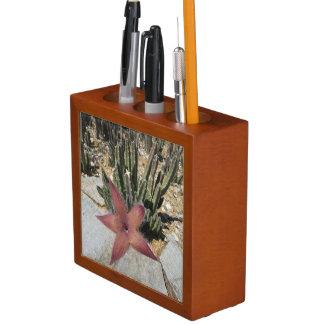 Giant Starfish Cactus Desk Organizer