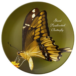 Giant Swallowtail Butterfly Porcelain Plate