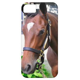 Giant's Causeway's Filly iPhone 5 Case