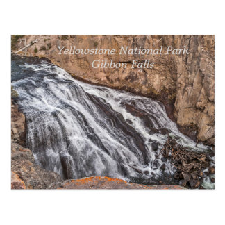 Gibbon Falls - Yellowstone Waterfalls Postcard