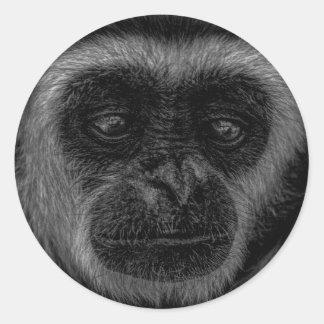 Gibbon wildlife indonesia mammal classic round sticker