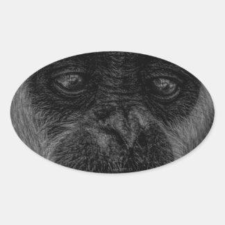 Gibbon wildlife indonesia mammal oval sticker