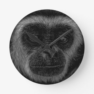 Gibbon wildlife indonesia mammal round clock