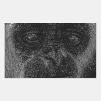 Gibbon wildlife indonesia mammal sticker