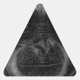 Gibbon wildlife indonesia mammal triangle sticker