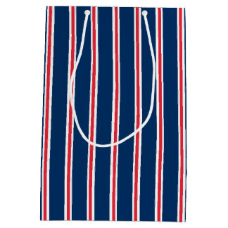 Gift Bag with blue white and red stripes