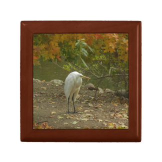 Gift Box - Egret in a City Park, Manchuria, China