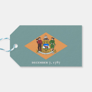 Gift Tag with Flag of Delaware State, USA