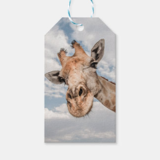 Gift Tag with Giraffe Sticking out Neck Pack Of Gift Tags