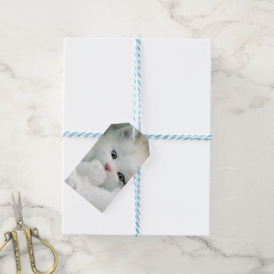 Gift Tags - White Fluffy Kitten