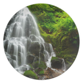 Gifts of Nature Forest Waterfall Dinner Plate