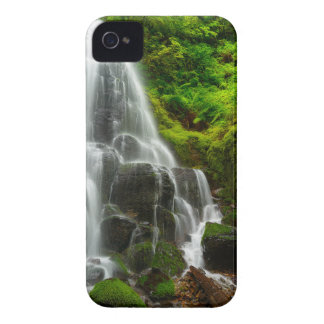 Gifts of Nature Forest Waterfall iPhone 4 Covers