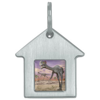 Gigantoraptor dinosaurs in the desert - 3D render Pet Name Tag