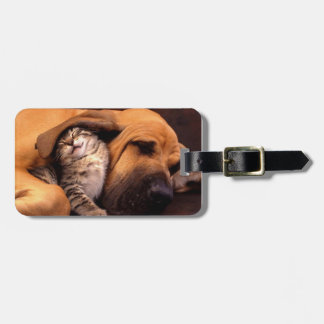 Gimme Shelter Luggage Tag