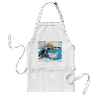 Gimme some sugar standard apron