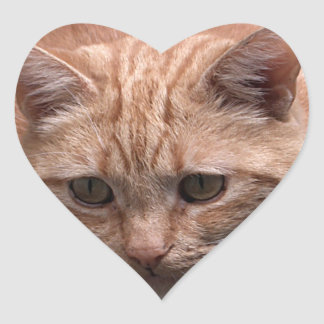 Ginger Cat Heart Shaped Sticker