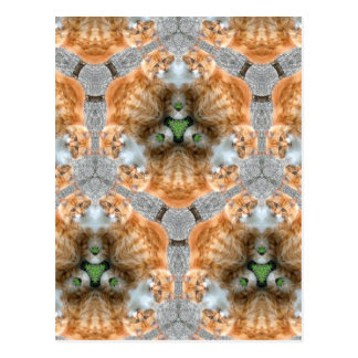 Ginger Cat Kaleidoscope Postcard