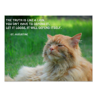 Ginger Cat St. Augustine Truth Quote Poster