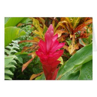 Ginger Flower Card