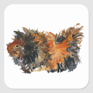 Ginger Fluffy Guinea Pig Watercolour Painting Square Sticker