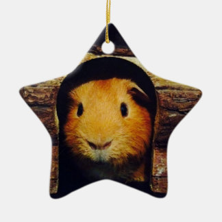Ginger Guinea Pig Gifts Ceramic Ornament