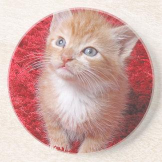 Ginger Kitten Coaster