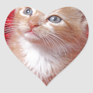 Ginger Kitten Heart Sticker