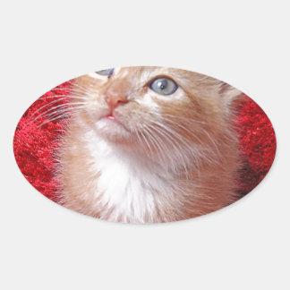 Ginger Kitten Oval Sticker