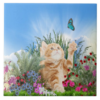 Ginger kitten playing with a butterfly ceramic tile