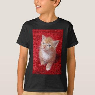Ginger Kitten T-Shirt