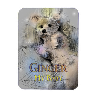 Ginger My Baby Magnet