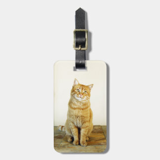 Ginger Tabby Cat Luggage Tag