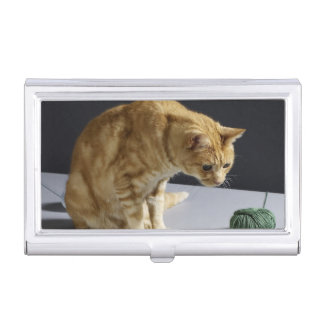 Ginger tabby cat sitting on table business card cases