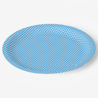Gingham-Pastel Blue-White-PAPER PARTY PLATES 9 Inch Paper Plate