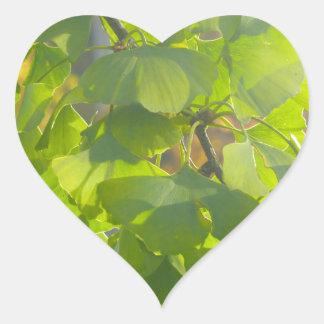 Gingko leaves in autumn sun heart sticker
